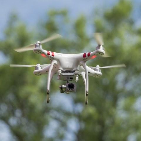 Flyer Drohnen und Wildtiere